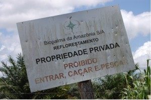 amazonia5