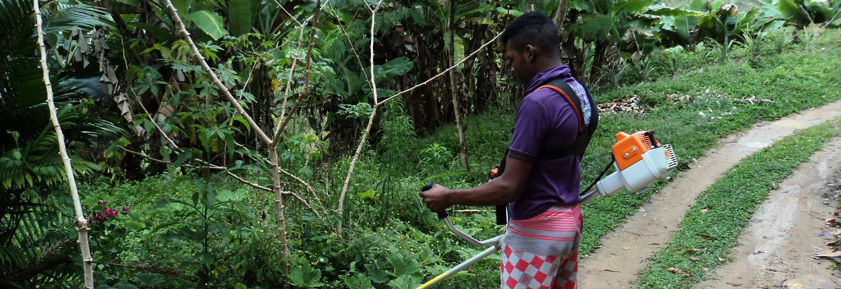 Jovens buscam alternativas de geração de renda na Bahia