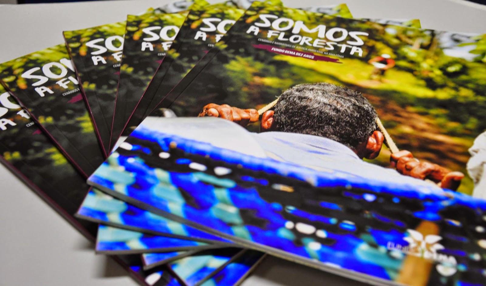 Fundo Dema celebra 10 anos com lançamento de revista
