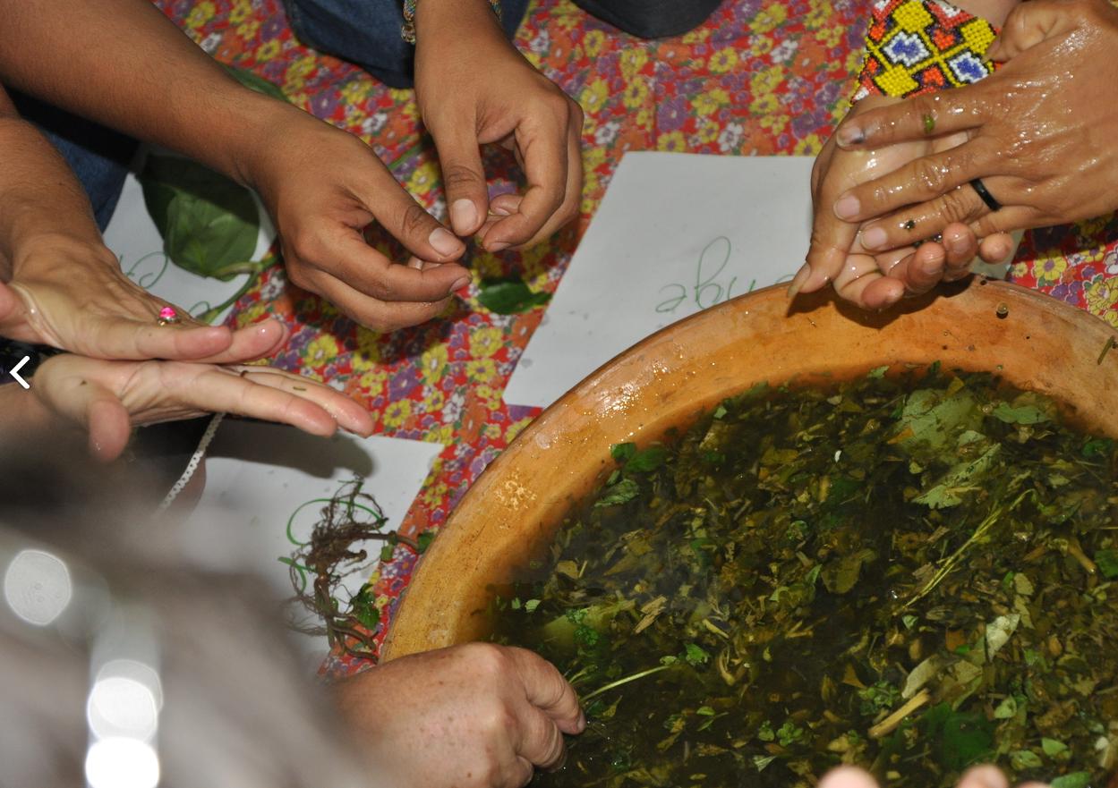 Edital apoia grupos de mulheres com foco em agroecologia