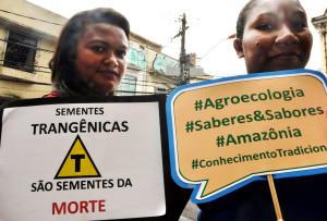 Extrativistas lutam para garantir alimentação saudável à população. (Foto: Élida Galvão / Fundo Dema)
