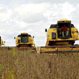 Colheita de soja em Mato Grosso. (Foto:Kleiber Arantes/ Secom)