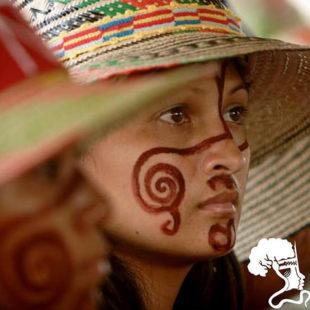Cartaz de divulgação do VIII Fórum Social Pan-Amazônico (VIII FSPA) / Divulgação