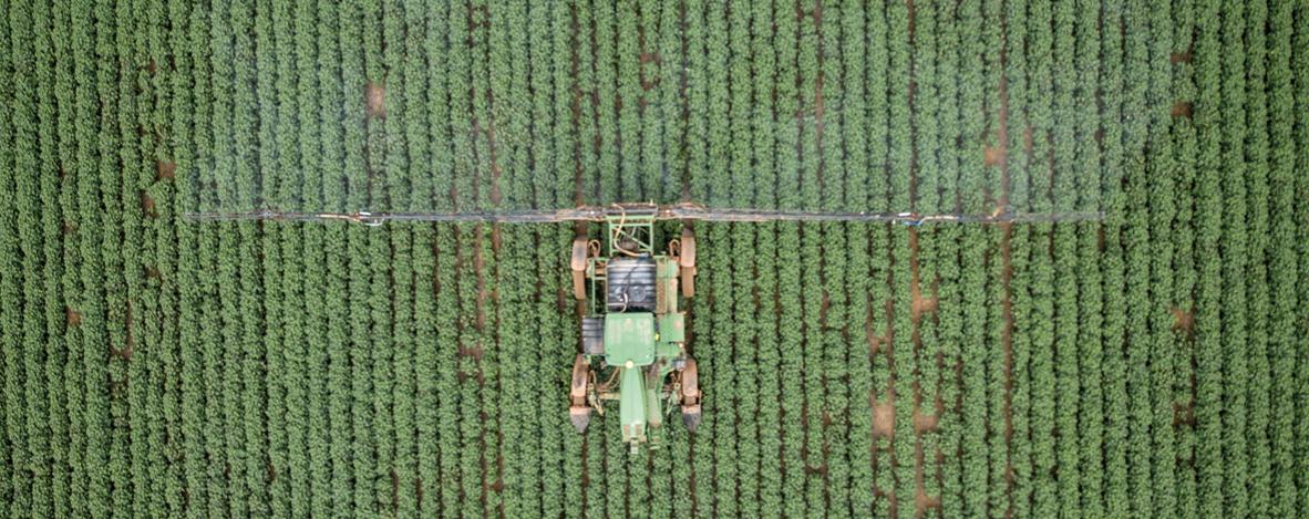 Brasil consome 20% dos agrotóxicos altamente tóxicos